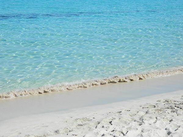 caraibiche