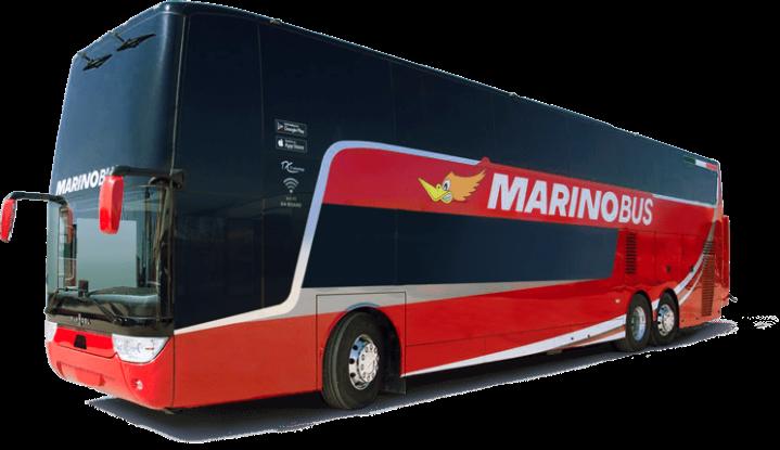 marino-bus.png