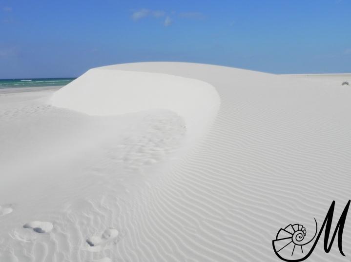 Delesha Beach