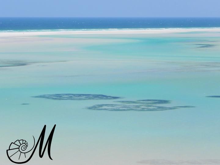 Qalansiyah Beach .jpg
