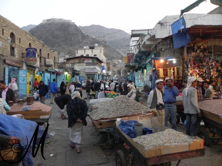 taizz yemen